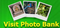 Visit Green Media Photo Bank
